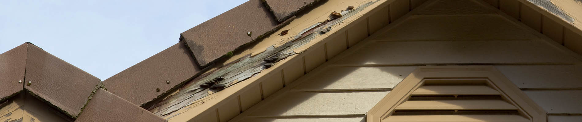 Termite damage treatment